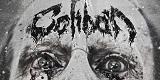 Cover der Band Caliban