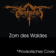 Cataphraktus - Zorn des Waldes - Cover