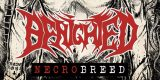Cover der Band Benighted