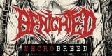 Cover - Benighted