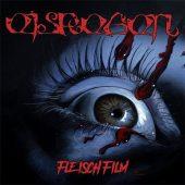 Eisregen - Fleischfilm - CD-Cover