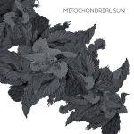 Cover - Mitochondrial Sun – Mitochondrial Sun
