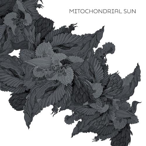 Mitochondrial Sun - Mitochondrial Sun - Cover