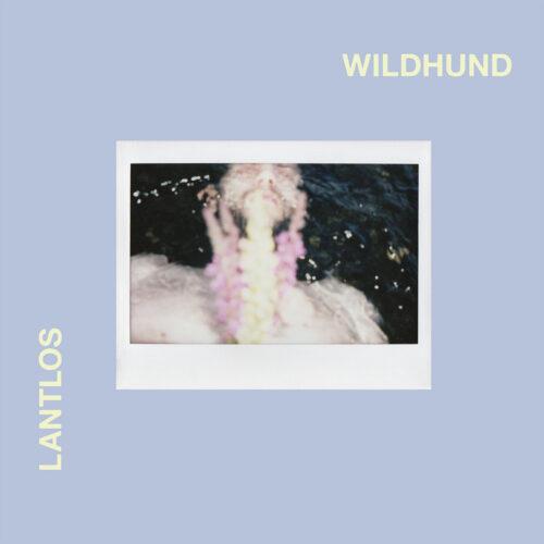 Cover - Lantlos – Wildhund