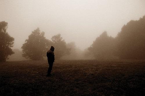 Woods Of Desolation 03