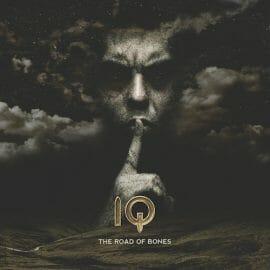 IQ_cd-cover2014