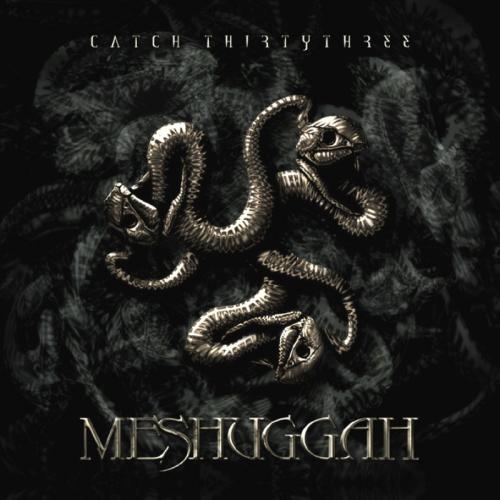 Meshuggah - Catch Thirtythree - Cover